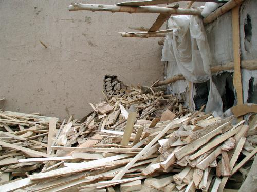 細いのもある。<br />今後、木材が必要な時はここに来よう。<br />自然材料は我々の基本だから。