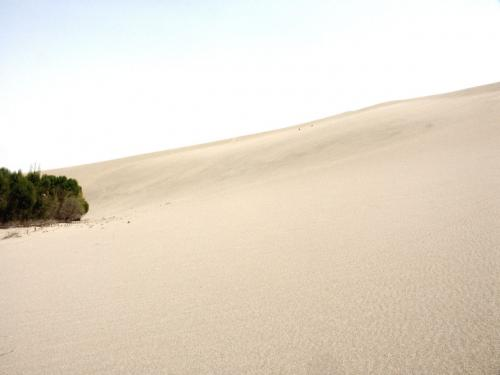 この砂山の向こうに月牙線があるそうだが・・・<br />きつそうだ。。。(~_~;;;<br />カメラが砂で危ういと感じたので、ひとまず仕舞った状態で登山に専念し、取り敢えず上まで向かった。<br /><br />そしてそこから見た山の向こうの光景は・・・<br />