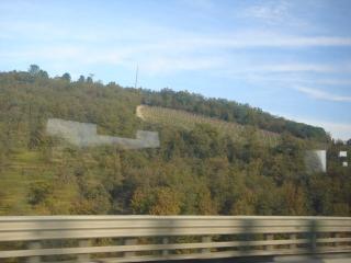 途中、2回の休憩を挟んでバスは進みます。景色は南にいたときとはうってかわって、緑の森や山に石造りの家。時々ワイン農園も見えるけど、オリーブの木は1本もありません。写真のような景色をみていると「北に着たんだなぁ。」と実感したりして。<br />そうこうしているうちに、シエナに到着。そして、バスの音楽が大きくなってFirenzeにも到着!11時に到着したので1時間遅れくらいでした。<br />おしりがちょっといたいけど、思ったほどきつくはなかった夜行バスでした。51ユーロだしね。