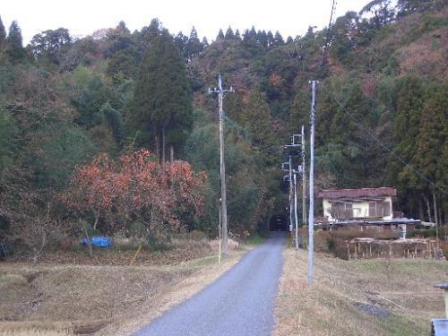 <田舎道><br />前の写真より少し進んだ先。<br />トンネル左の柿の木が立派です。