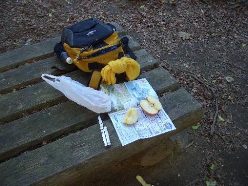 <日高邸跡にて朝食><br />9時50分頃。<br />大福山から山道を下ると梅ヶ瀬渓谷に到着しますが、そこから渓谷を少々登りきったところに日高邸跡があります。<br />上総牛久駅にも上総大久保駅にもコンビニはありませんから、持参した林檎を軽く食べました。