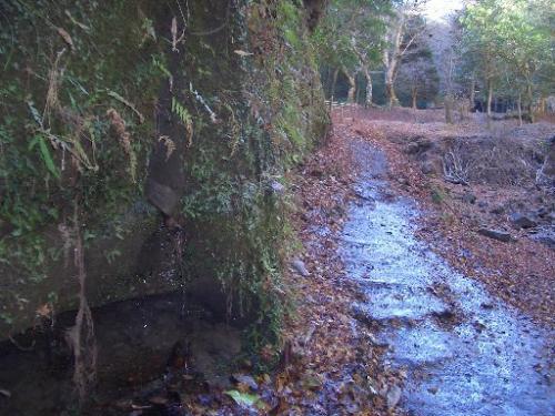 <日高邸跡><br />少し下った所からの撮影。<br />左手からは清水が滴っています。