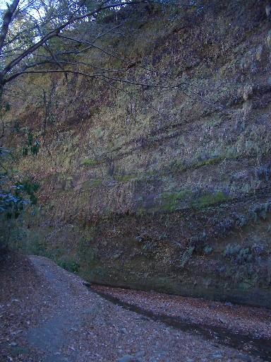 <梅ヶ瀬渓谷><br />こんな地層のアラワになった風景があちこちに見られます。