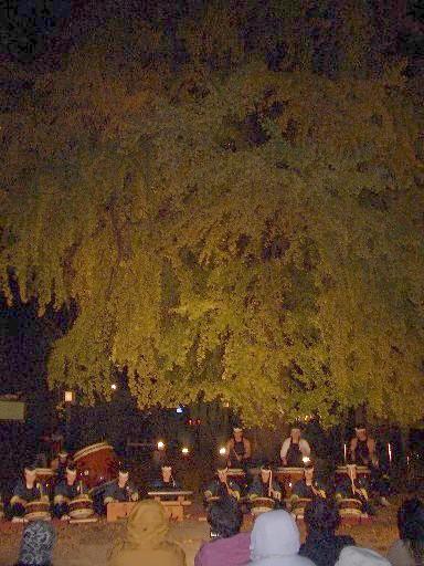 <氏家>今宮神社>公方太鼓><br />気合入り過ぎの「公方太鼓」、何百年生だか分からない銀杏の木下で公演しました。<br />良過ぎだって!<br />因みに「公方太鼓」の「公方」は、「喜連川公方」の「公方」に由来してます。<br />ひいては「古河公方」、「鎌倉公方」に繋がります。