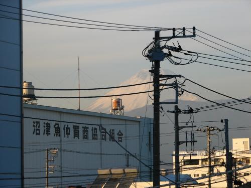 沼津はやっぱり魚の町.<br />魚関連の工場がいっぱいあります.<br />