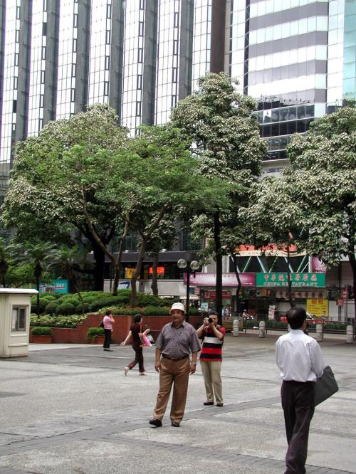 目的のビザ更新場所前(新文華大厦)の広場。<br /><br />またまたポーズを取る爺ぃ。<br />