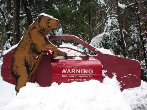 車内に食べ物を置いて駐車するとこのようになるよという警告看板 <br /><br />ヨセミテの雪景色は如何でしたか? <br /><br />喧騒のヨセミテも好いけど、静かな冬のヨセミテも良かった<br /><br />山々に積もった雪がこれから徐々に融け出し、ヨセミテバレーに無数の滝として旅行者に披露する<br />