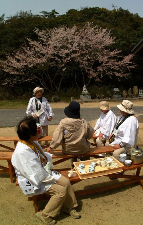 まだ桜の花が残っています。<br />お茶とおにぎりのお接待です。