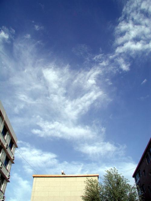 夕方6時40分。<br />まるで真っ昼間のような空です。<br /><br />風の流れに合わせた雲が、空のどの方向にも漂っていました。<br />これはアパート前から眺めた東の空。