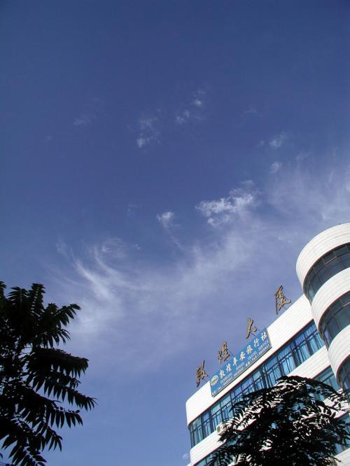 敦煌大厦上空に舞うカーリーで可愛らしい雲。<br /><br />東北東方向になります。