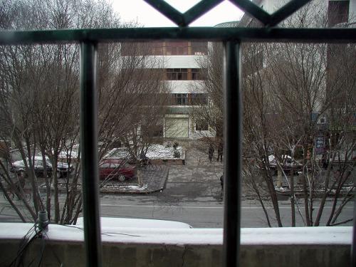 冷えが部屋の中まで凍みているので、現在宿泊している葯業服務中心の3人部屋の窓から沙州南路を眺めると、あちらこちらに雪が積もっていました。<br />起きるのが遅くてこれだけでしたが、早朝は綺麗な雪景色だったそうです。。。残念・・(ーー;