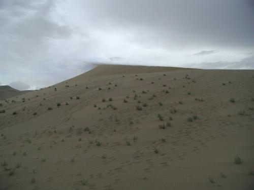 風が吹く中、こんな画像も撮れました。(^^v<br /><br />風に飛ばされる砂です。<br />こうして黄砂の第一歩が始まるんですね・・・