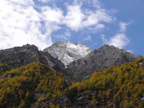 本当は先の山に行きたかったが、<br />ここから5日はかかるとアッサリ言われ断念。<br />もうちょっと調べておけばよかった。
