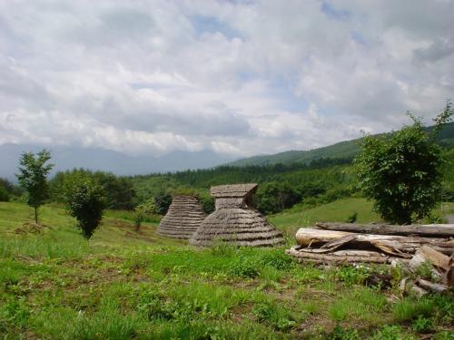 マルメロから上田を通って国道144号を東へ。<br />千古温泉や嬬恋村を通って、万座温泉方面の県道59号線。<br /><br />突然、縄文か弥生時代の竪穴式住居を発見。<br />マルメロの和田村でも太古の昔から人が住んでいた。<br />村の石碑に書いてあったので、このあたり一帯はいかなる山ん中でも太古の昔に人が住んでいた、と思われる。<br /><br />日本の山ん中には結構古代の遺跡があるものです。<br />三重の山ん中にも遺跡があった。<br />(奈良の橿原考古博物館にいけばわかる)