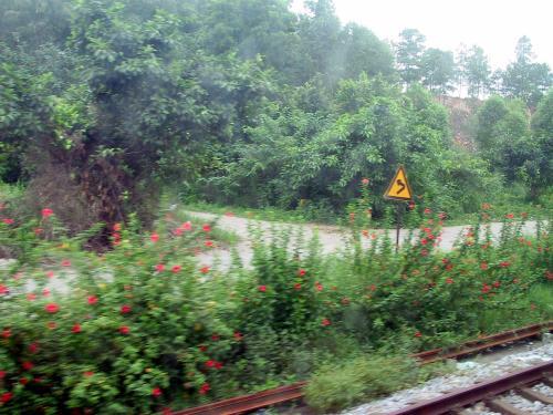 その後、徐行運転が続き、結果的にK38次列車は、一時間遅れで杭州に到着した。