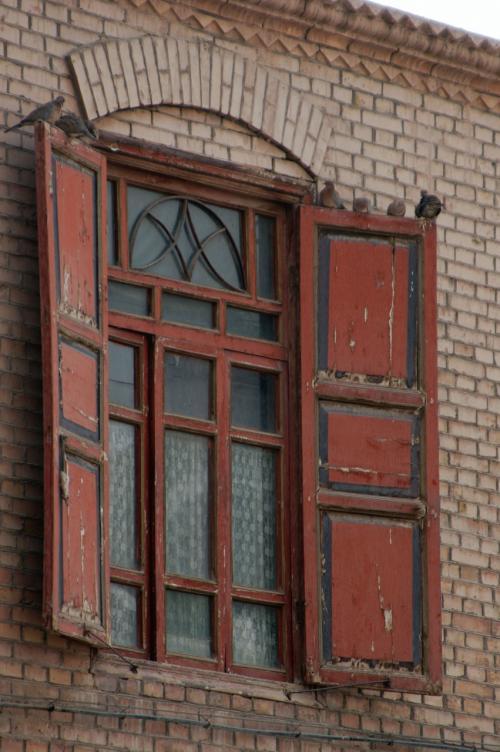 会合中の斑鳩。家の窓蓋に沢山停まっていた。<br /><br />維吾爾では鳩を飼って競走させる人が多い。娯楽の少ない地方ならではの流行か?<br />だからなのか、維吾爾人は鳩類を進んでは食べない。<br /><br />だからなのか、さっきの斑鳩君もカメラを向けても殆ど逃げようともしない。<br />うっかり近づきすぎて、やおら逃げても、「足」で避けて行くくらいで飛んでは行かなかった。<br /><br />かく言う韓さんもレース鳩(鴿子)を沢山飼っている。<br />なので鳩は食べない。