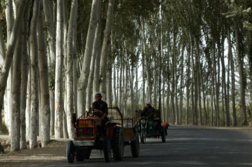 行き交う乗り物もこの通り。<br />トラクターや驢馬車や、顔かたちの違う民族が散歩する光景。