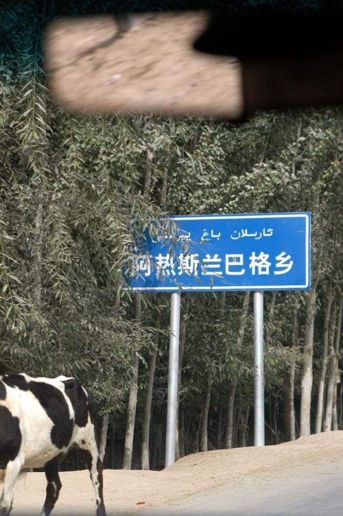 「阿熱斯蘭巴格郷(アルスランバック村(集落クラス))」の標識。<br />乳牛の「半ケツ」は気付かなかった・・・(~~;