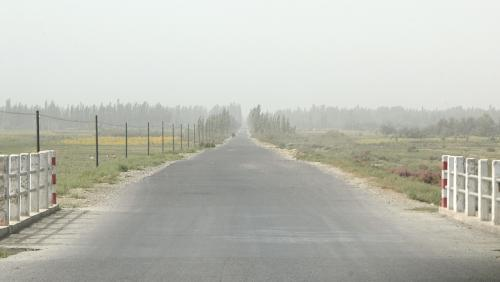 工事区間を過ぎると、さっき手前の道路にもあったような、簡単なアスファルトの道になっていた。<br /><br />・・・真っ直ぐ。
