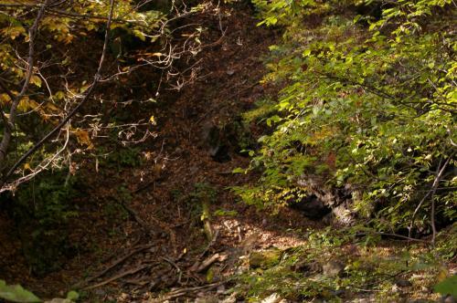 昇仙峡に比べて2〜3週間程、紅葉の時期が早いそうなのですがほぼ緑です。<br />まあ、紅葉見に来たわけじゃないし・・<br />