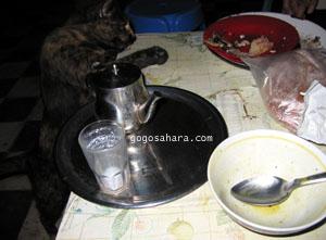 お皿の上の魚を手で引き寄せて食べる猫