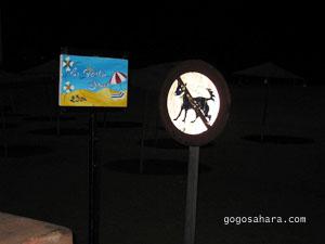 ビーチにある犬立ち入り禁止の看板と、<br />ビーチチェア25dhの看板。