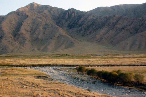 川縁の平原には草原が広がっている。<br />川は、所々に水はあるものの、このシーズンは干上がっている所が多い。