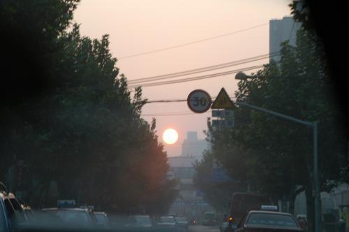 ・・・と言う事で、波瀾万丈の新疆放浪を終え、上海へと戻ってきたこまたち。<br />上海はホームグラウンドなのに、まだ「帰ってきた」と言う感覚がない。<br />何せ、もう1年以上も戻ってなかったからだろう(住むと言う目的では)。<br /> <br />朝5時半起床。<br />昨夜は結局殆ど寝られなかった。<br />サッサと準備をして爺ぃに内線。<br />タクシーで駅南の浦東空港行きバス停へ向かう。<br /> <br />正面には朝日が昇り始めていた。<br />