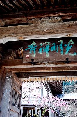 光明禅寺。<br /><br />鎌倉中期の文永10年(1273年)、管家の血統である鉄牛円心和尚によって創建された、臨済宗東福寺派の禅寺だそうです。<br />「苔寺」の名前で親しまれています。