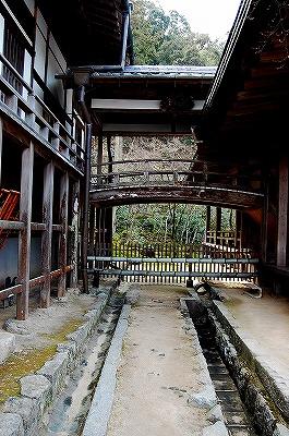 お寺の建物も古そう…。