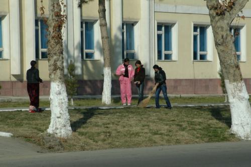 ホテル前の教育機関、何かのカレッジだろうか。朝、皆で清掃していた。