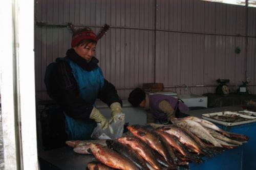 オッシュバザールで淡水魚を売る朝鮮系キルギス人。写真を撮っていいかと聞くと気さくに話してくれた、それで朝鮮系とわかった。