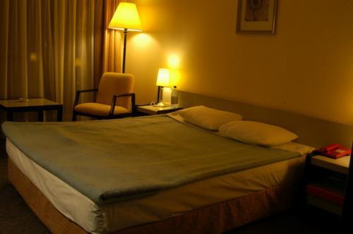 この窓から雪景色の天山山脈が眺められた。部屋の広さは十分だが、部屋でインターネットは接続不可だった。<br />AK-KEME hotel (旧Pinara)USD74/night Inc.朝食