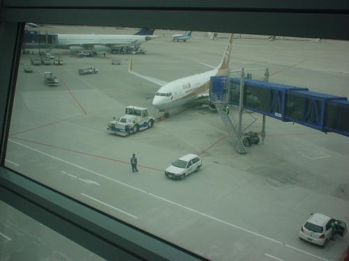 """乗った飛行機はコレ! """"金シャチ号""""ことANAのGold Jet(B737−700)です。"""