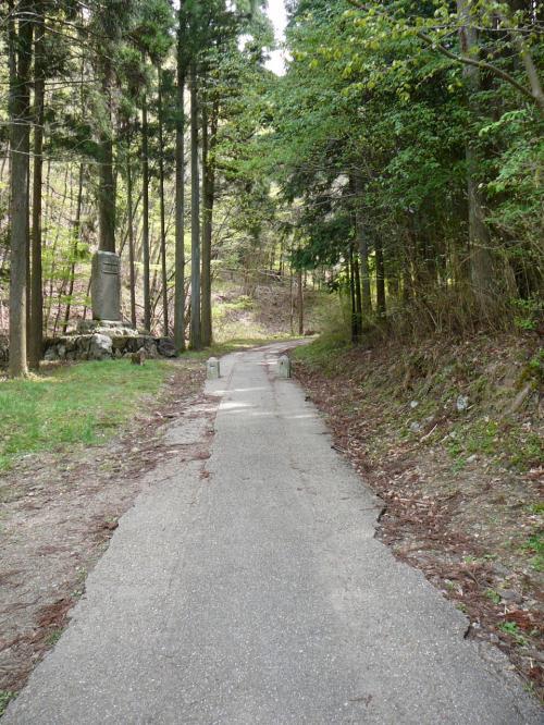 滝への道(新緑が綺麗でした)