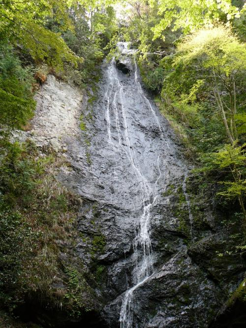 琴滝(水量が少ない)<br />高さ40mの一枚岩を流れ落ちる美しい滝。十三弦の琴糸のように見え、その音色が琴の音に似ていることが名の由来といわれています。