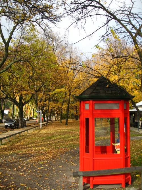 秋の彩りの中に<br />朱の電話ボックスのコントラスト<br />が目を惹きました。