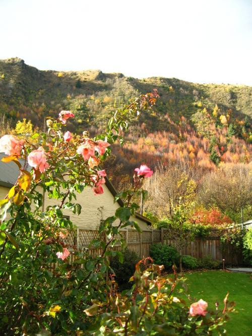 戻る事にしたものの<br />横道にそれて〜<br />みた家の庭と山の秋