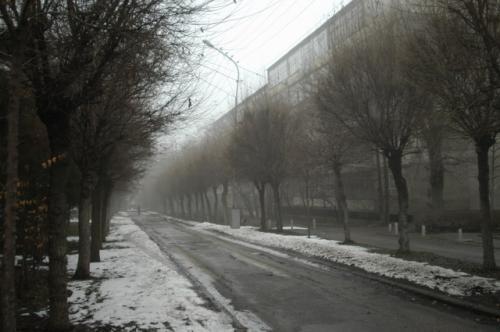 分別ゴミ入れの角を曲がり、北へ登る。ある小路がもやがかかって幻想的な様子になっていた。寒いね。