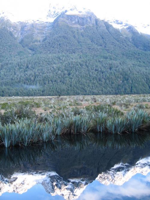 湖面に雪山<br />が映し出されています。