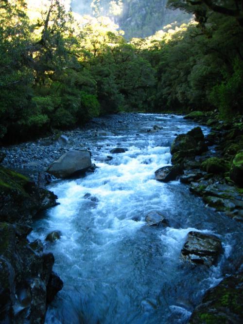 多分)キャズム内のクレドウ川からアッパー滝かと<br /><br />ネッ、素敵!!な風景<br />ザ・キャズムは忘れられない光景になりました。<br /><br /><br />続いて<br />フィヨルドクルーズです。