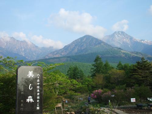 美し森山(1542m)。この遊歩道をさらに登っていくと、八ヶ岳の盟主『赤岳』の登山道になる。登っても登っても樹林地帯ばかりで展望は期待できないので、本格的な登山者以外は適当な所で引き返した方がいい。