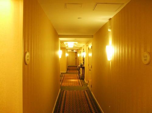 8階客室前の廊下。フロント、ロビー、レストラン周辺は狭く、ビジネスホテル仕様である。