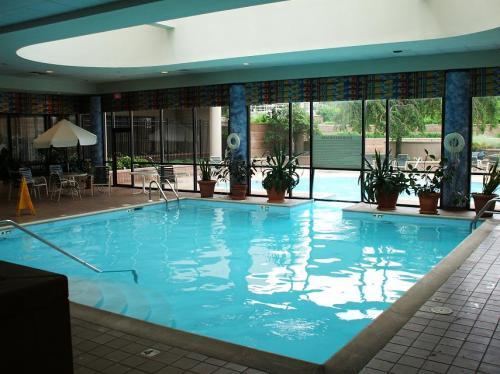 室内温水プール。やや冷たい。