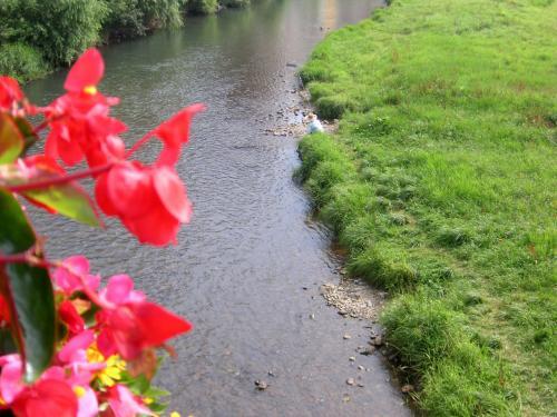 城跡を歩いて<br /><br /> 中津川を越えて<br /><br />朝ドラ「どんと晴れ」でもこの付近で撮影。