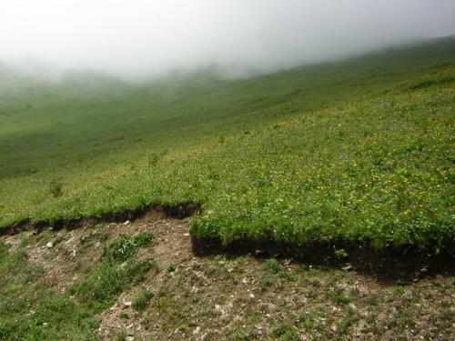 四姑娘山への道