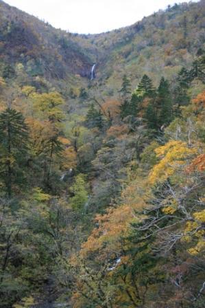 凄い高いところから、滝が流れ落ち、下の川まで流れている様子が見て取れました。