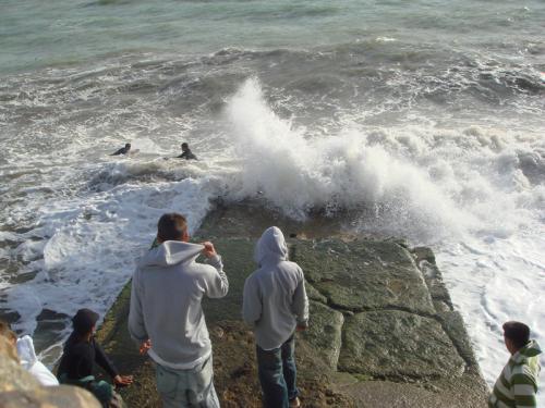 ビーチの一角。よ〜くみると、海の中に人の姿がありました。