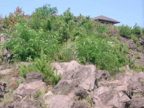 溶岩の風景が続くので、もっとよく見ておきたいと思って、展望台(写真の上の屋根)に行ってみることにしました。<br /><br /> 駐車場に車を停めて、ひとりで駆け上がりました。<br /><br /> そこは、本当に異様な光景が広がっていました。