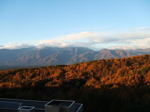 朝日に落葉松の森が輝いている。絶好のサイクリング日和。気合いが入る。